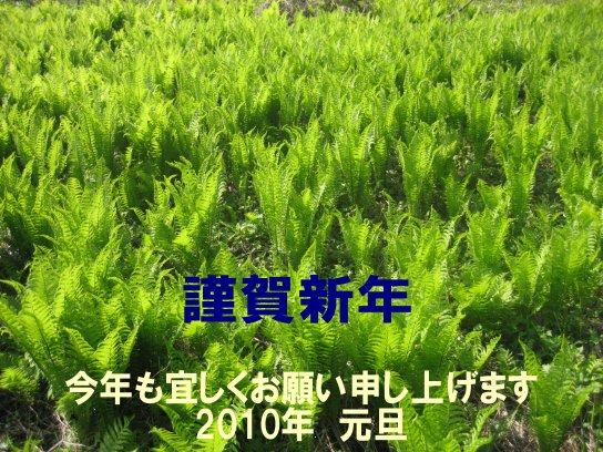 f0145363_0371133.jpg