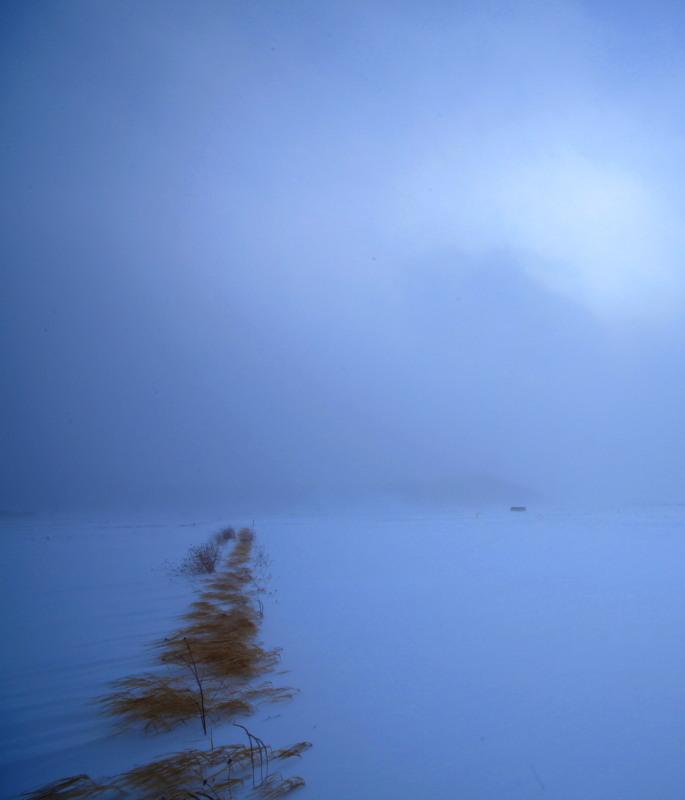 元日の吹雪_f0075075_16525178.jpg
