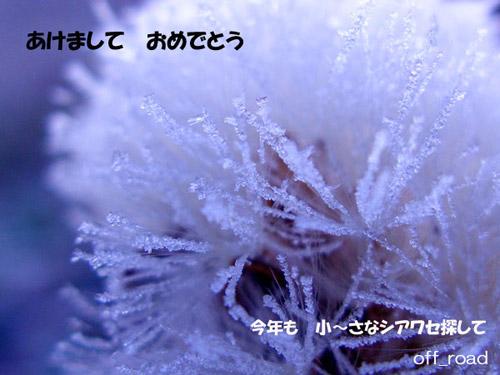 a0013879_0461777.jpg