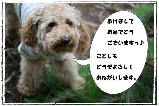 c0085385_10444694.jpg