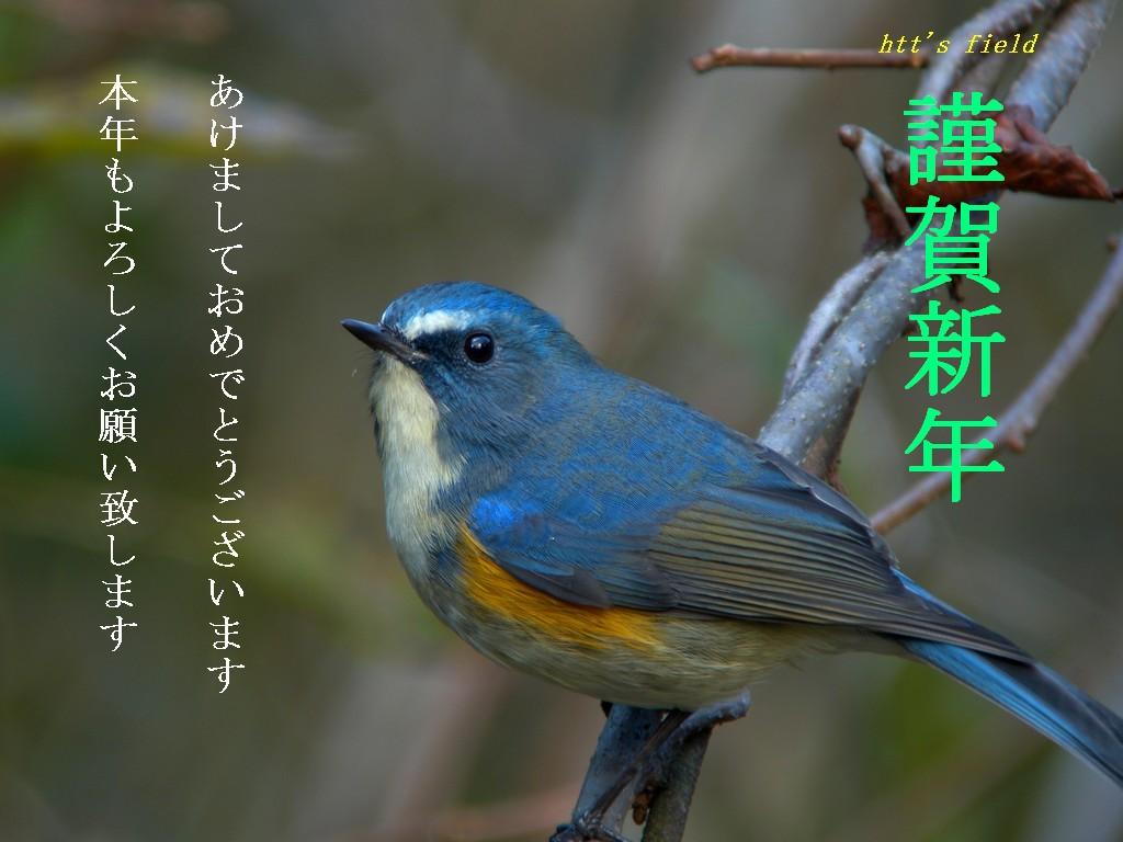 f0148627_2237883.jpg