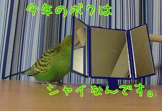f0196665_2341642.jpg