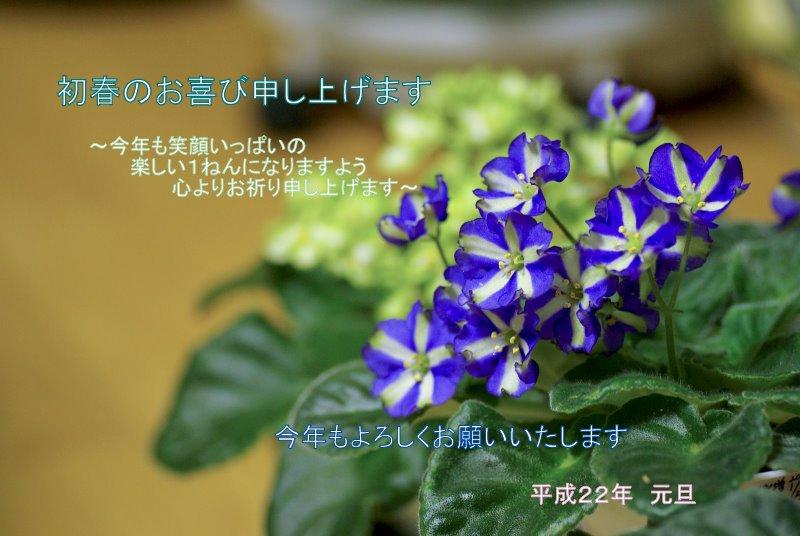 f0135269_10495598.jpg