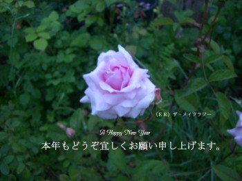 c0078586_214523.jpg