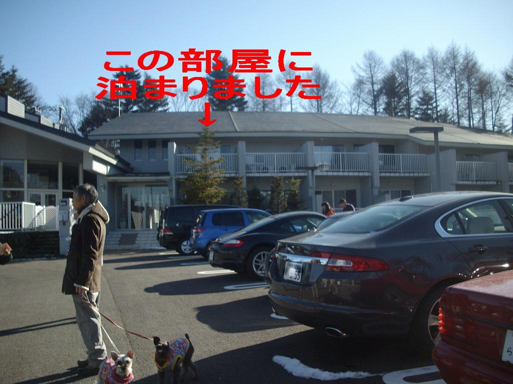 c0138198_18512436.jpg