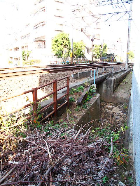 河骨川・姿を現した参宮橋の遺構_c0163001_1617539.jpg