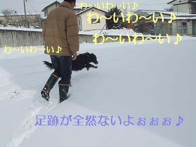 f0179203_12114312.jpg