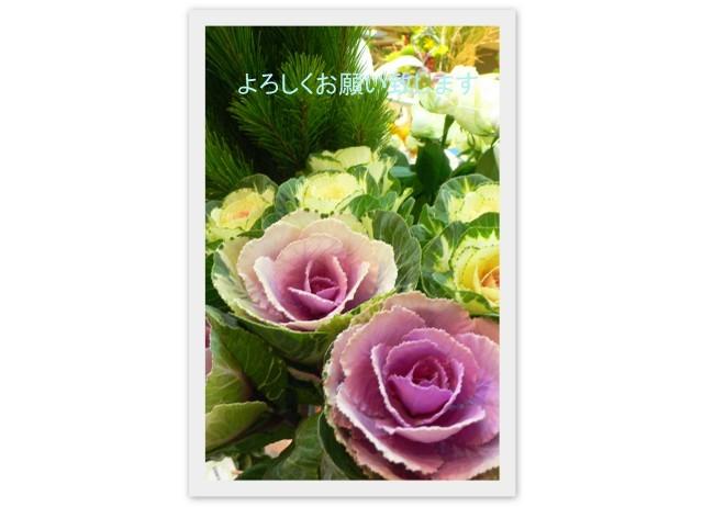 f0167007_16284524.jpg