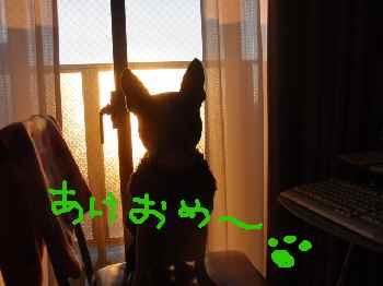 c0220715_16471430.jpg