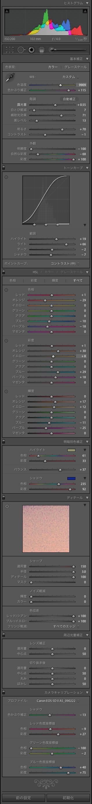 Lightroomテキトー設定_f0077521_1818144.jpg