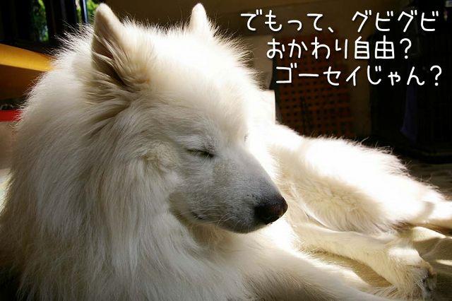 c0062832_20112094.jpg