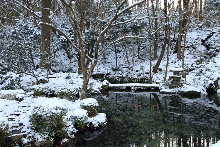 雪の三千院_e0051888_17154075.jpg