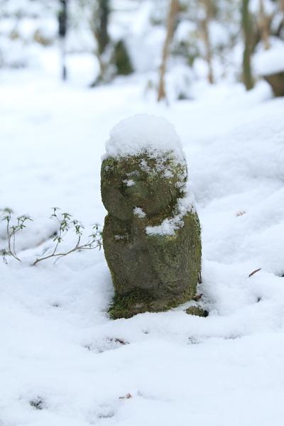 雪の三千院_e0051888_1717393.jpg