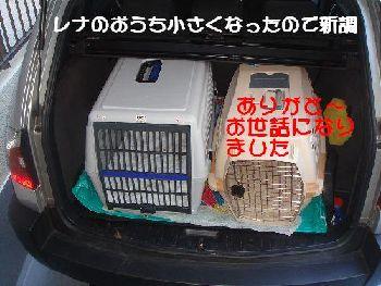 b0101991_23192356.jpg