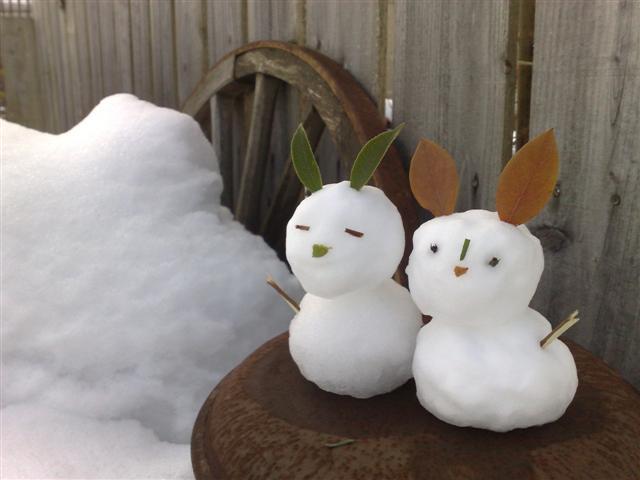 雪だるま_b0132338_21542834.jpg