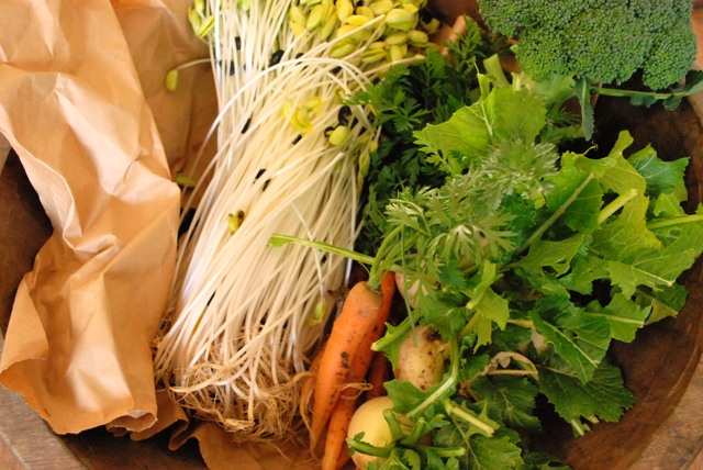 元気なお野菜たち!_c0156749_19435746.jpg