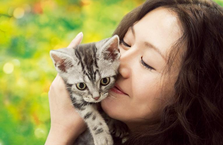 【映画】 グーグーだって猫である_c0031157_17534815.jpg