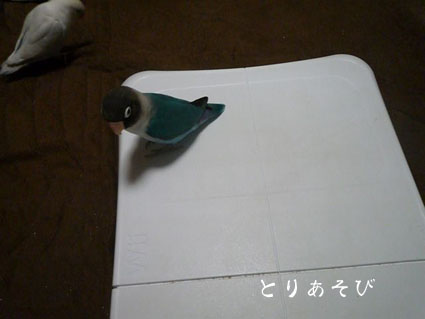 e0147757_2035169.jpg