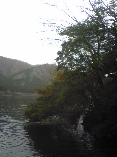 箱根神社_b0016474_12253325.jpg