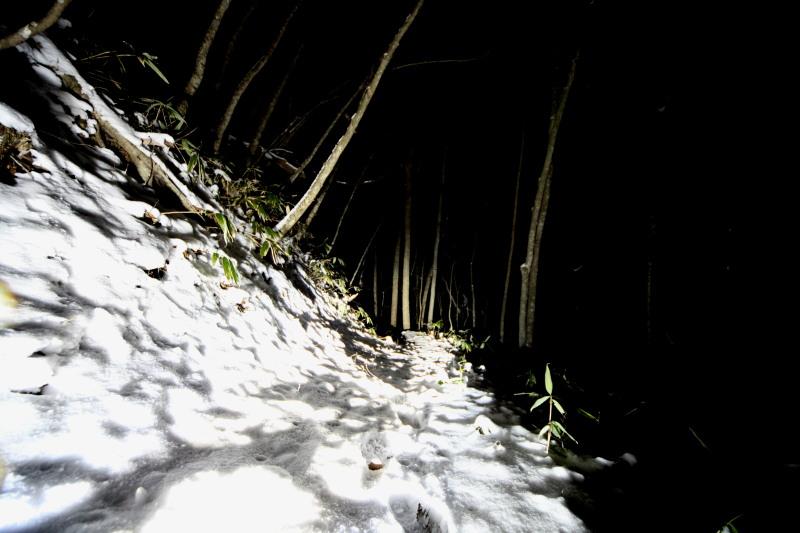雪の夜道は恐ろしい?_f0075075_121405.jpg