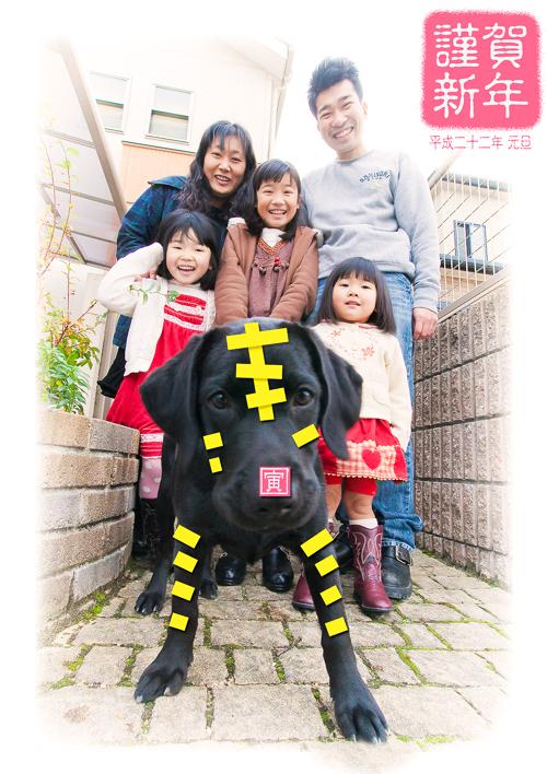 12/13 家族写真の出張撮影/自宅前_a0120304_314921.jpg