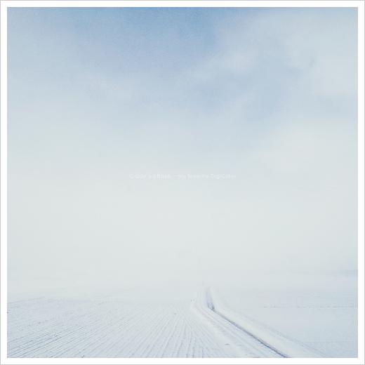 雪景 #02_e0117517_1262030.jpg