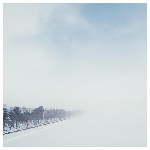 雪景 #02_e0117517_1264495.jpg