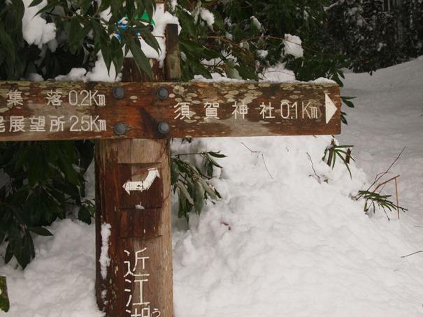 初詣~音で始まる一年~(1月5日写真更新!)_c0160822_1434135.jpg