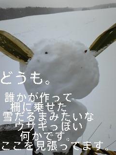 f0148927_1749498.jpg