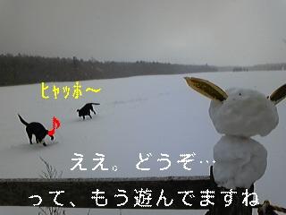 f0148927_17501781.jpg
