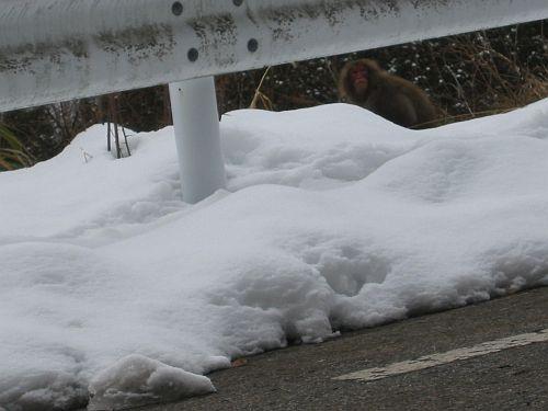 歴史に残る2009年をBR9レガシィの冬季テストで締める!_f0076731_17381292.jpg