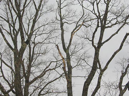歴史に残る2009年をBR9レガシィの冬季テストで締める!_f0076731_17551023.jpg