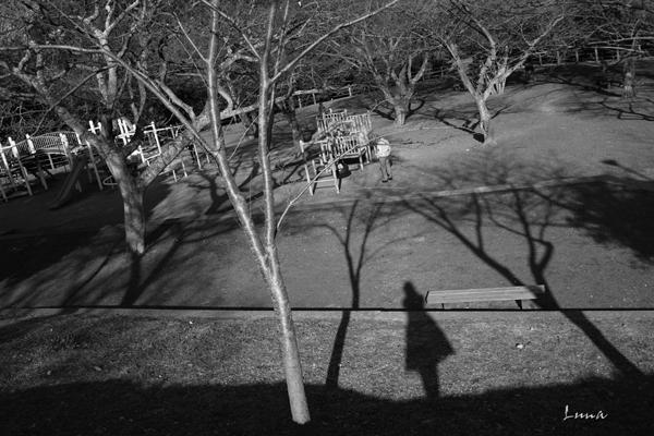 午後の公園_c0165046_191514100.jpg