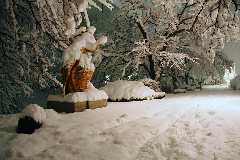 セントラムと年末年始、雪の富山市街_c0196076_2313911.jpg