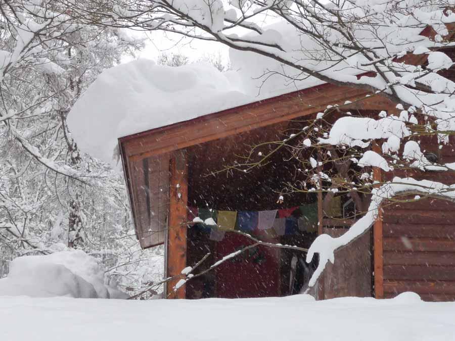きょうも、雪・ゆき・ユキィ〜_c0223095_1438384.jpg
