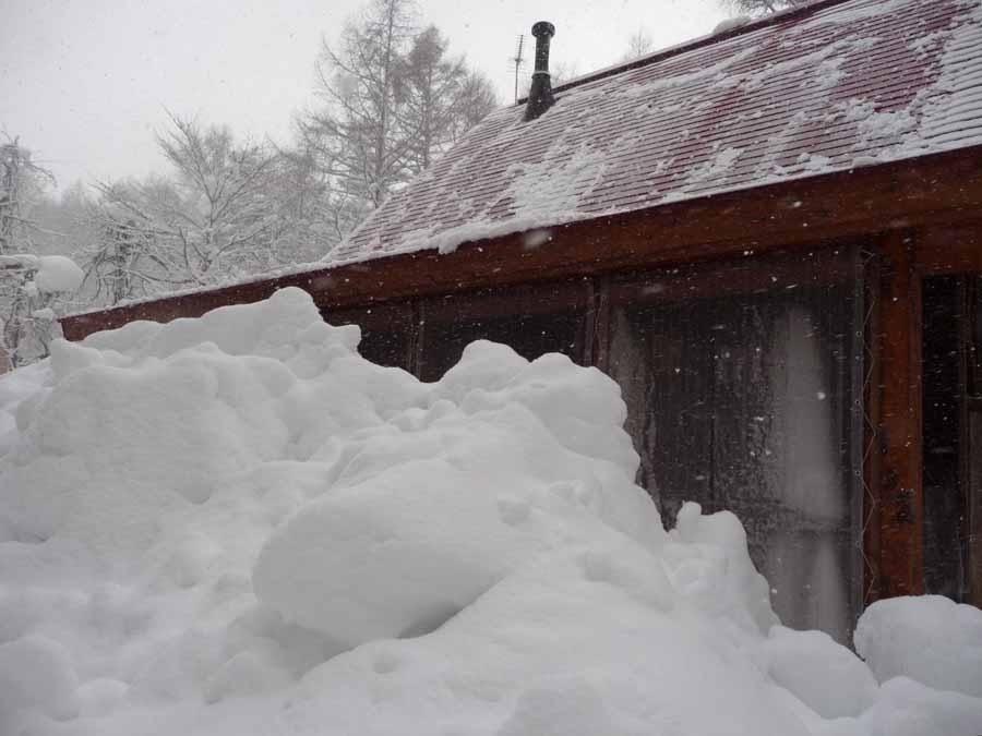 きょうも、雪・ゆき・ユキィ〜_c0223095_14415240.jpg