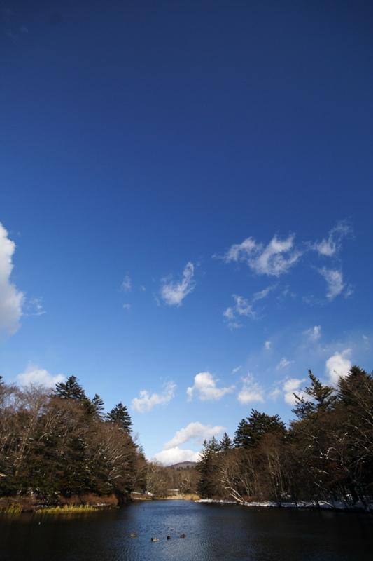 雲場池続きます_f0091207_18464450.jpg