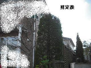 f0031037_20151263.jpg