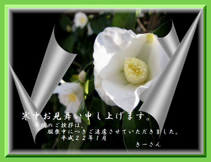 c0106443_1428923.jpg