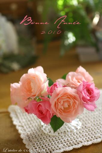 Bonne Année 2010!!_e0073946_2313751.jpg