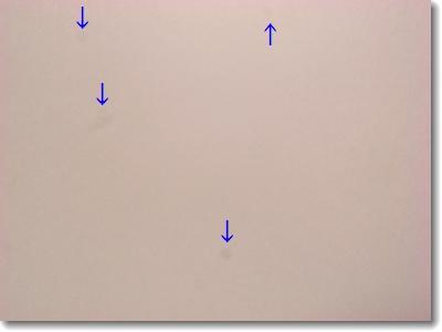 デジカメ(GR DIGITAL II)のレンズのホコリ除去_c0147448_2045497.jpg