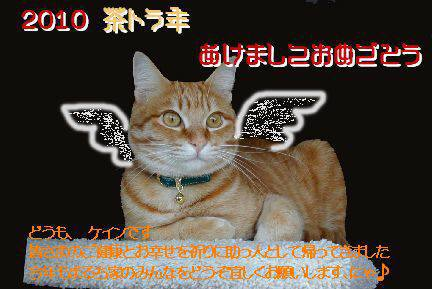 c0023474_1651037.jpg