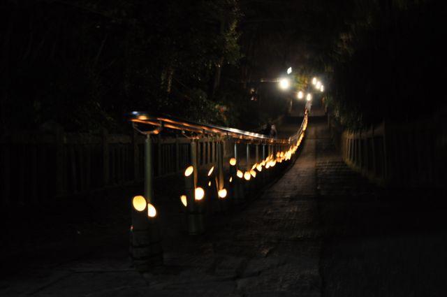 参道に1000基の竹灯籠_f0191383_200585.jpg