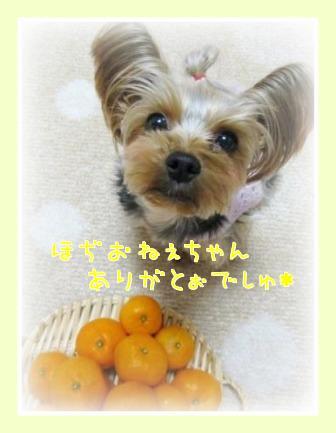f0143386_010727.jpg