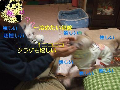f0179203_756469.jpg