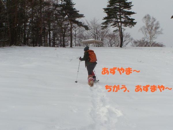 b0067012_23325192.jpg