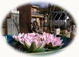 新春のご挨拶_f0045132_11511951.jpg