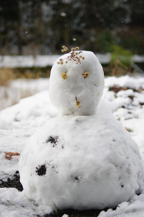 雪だるま..._f0152550_22231368.jpg
