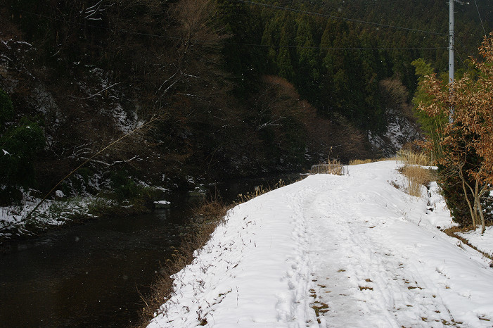 雪だるま..._f0152550_2225195.jpg