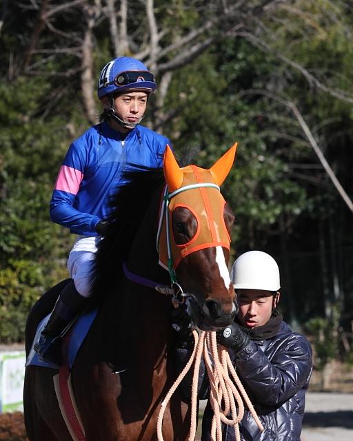 2010年1月1日(金) 高知競馬 2R 門松特別 E8_a0077663_17542054.jpg